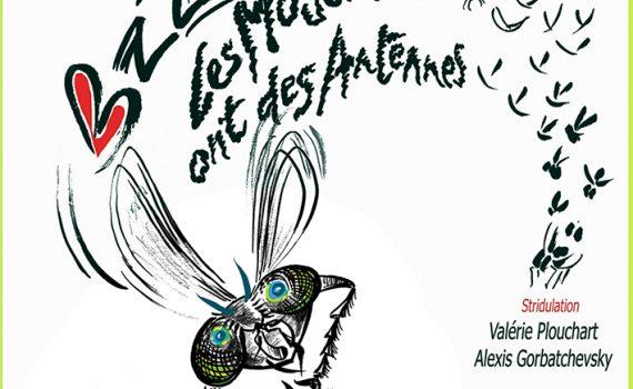 Bzzz, les mouches ont des antennes